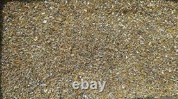 100 Grams Gold Plated Cpu Pins For Scrap Gold Recovery