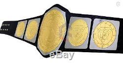 CHAMPS Georgia NWA Wrestling Championship Belt Dual Gold Metal Brass Plates